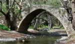 See the Sites (Venetian Bridge)