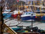 ... & WATCH THE TRAWLERS LANDING THEIR CATCH