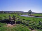 Thumbnail Image - Pulborough Brooks and the South Downs
