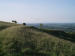 Thumbnail Image - The South Downs above Storrington
