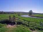 Thumbnail Image - The River Arun and Pulborough Brooks