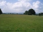 Thumbnail Image - The South Downs from Petworth Park