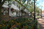Thumbnail Image - The High Street, East Grinstead