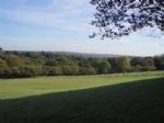 Thumbnail Image - Looking south east over the Ashdown Forest