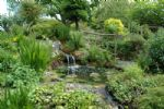 Thumbnail Image - Part of the water garden