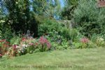 Thumbnail Image - Library Cottage - a wonderful and colourful garden