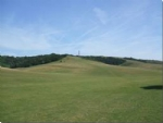 Thumbnail Image - The Downs west of the country park
