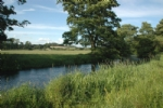Thumbnail Image - The River Rother beside the house