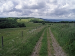 Thumbnail Image - The South Downs Way due south at West Burton