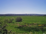 Thumbnail Image - The South Downs from Pulborough Brooks