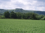 Thumbnail Image - Chanctonbury Ring on the South Downs