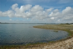 Thumbnail Image - Pagham Harbour Nature Reserve
