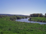 Thumbnail Image - The River Arun and Pulborough Brooks