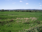 Thumbnail Image - Looking towards the RSPB Reserve Pulborough Brooks