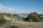 Thumbnail Image - Pagham Harbour