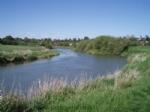 Thumbnail Image - The River Arun at Pulborough