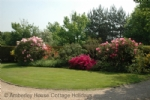 Thumbnail Image - The gardens at High Weald Cottage