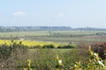 Thumbnail Image - View from Winchelsea towards Rye