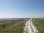 Thumbnail Image - The South Downs from Trundle Hill above Chichester
