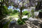Thumbnail Image - Summer under the pergola at Painters Old Studio
