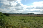 Thumbnail Image - Looking east from the Granary