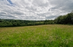 Thumbnail Image - Classic High Weald scenery