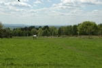Thumbnail Image - The Ashdown Forest with distant views to the South Downs