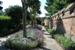 Thumbnail Image - The Cathedral Gardens