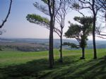 Thumbnail Image - View to the south from Chanctonbury Ring