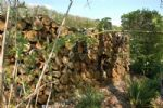 Thumbnail Image - Log wall habitat for beneficial insects and wild life
