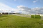 Thumbnail Image - Goodwood racecourse looking towards Trundle Hill