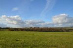 Thumbnail Image - Views over the Goodwood Estate in the South Downs National Park