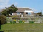 Thumbnail Image - Cormorants - Fairlight, Near Hastings, East Sussex