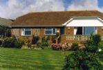 Thumbnail Image - Cormorants - Fairlight, East Sussex