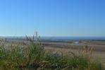 Thumbnail Image - Camber Sands Beach