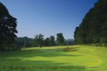 Thumbnail Image - Mannings Heath Golf Course located next to the property
