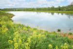 Two acre private fishing lake