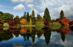 Thumbnail Image - Sheffield Park Gardens in the Autumn