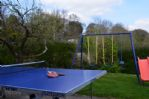 Thumbnail Image - Table tennis & swings