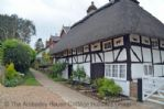 Thumbnail Image - Cat House in Henfield