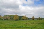 Thumbnail Image - Surrounding countryside of Henfield