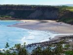 Surfers in Cayton Bay