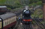 Thumbnail Image - Flying Scotsman on the Bluebell Railway in spring 2017