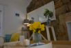 Mangle Cottage tastefull furnishings are practical and well thought out