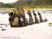 The Beach Hut - Beach wreck at low tide