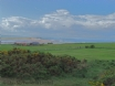 Budle Bay 5 miles north of Beadnell