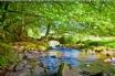 A ramblers paradise