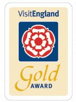 VE Gold Award
