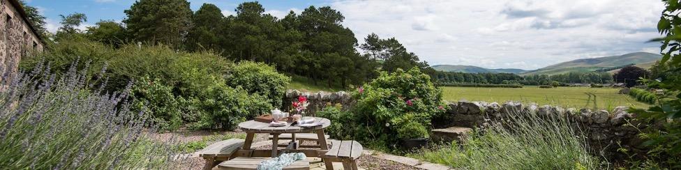 Teddy's Cottage - banner image
