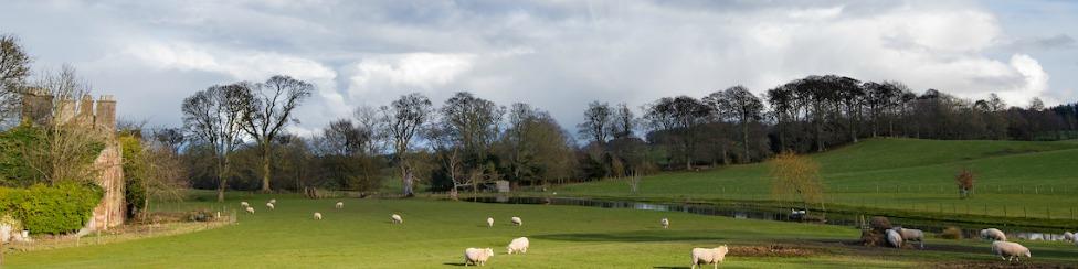 Byreman's Cottage - banner image